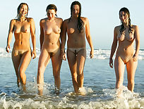 Group hairy nude beach girls 1200X908 jpeg