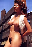 Vintage big torpedo puffy tits 482X700 jpeg