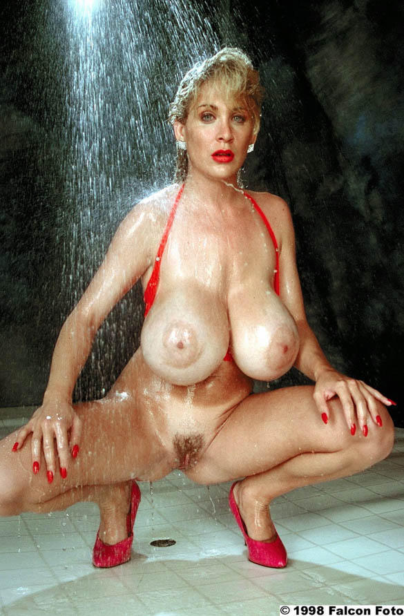 Lisa chest anal porn — photo 9